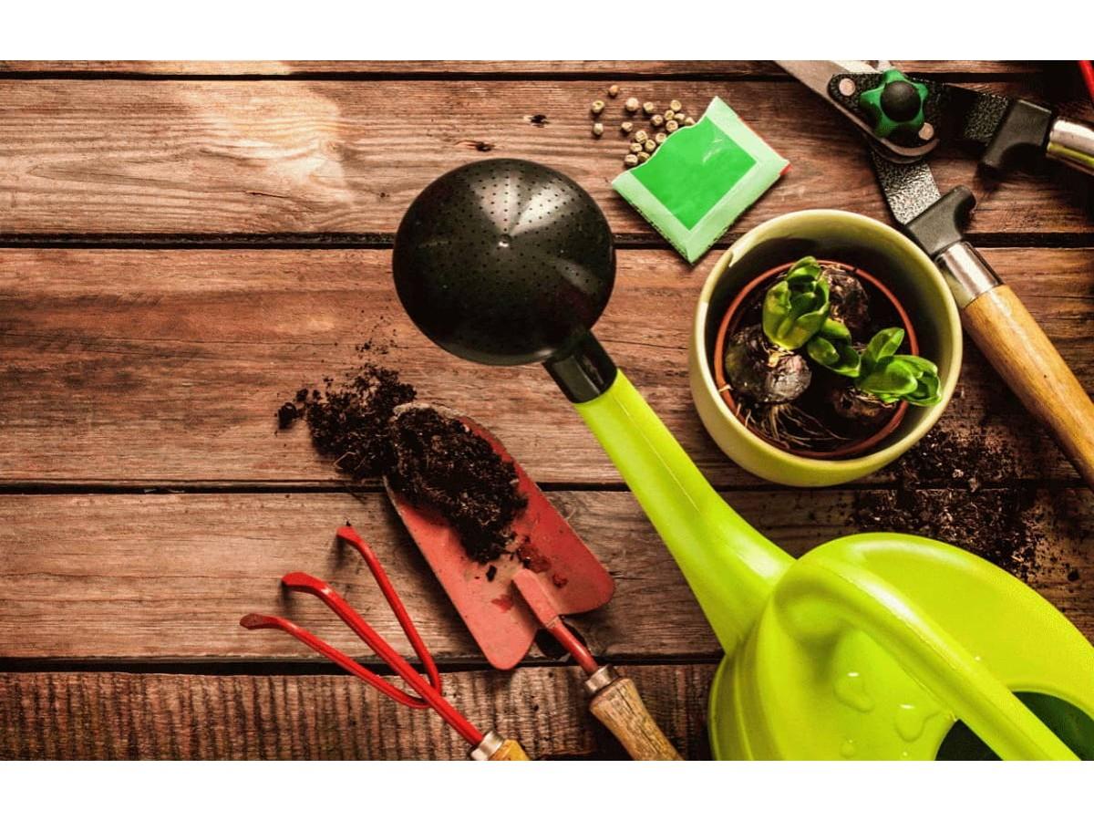 Торфяные питательные грунты: в чем разница?