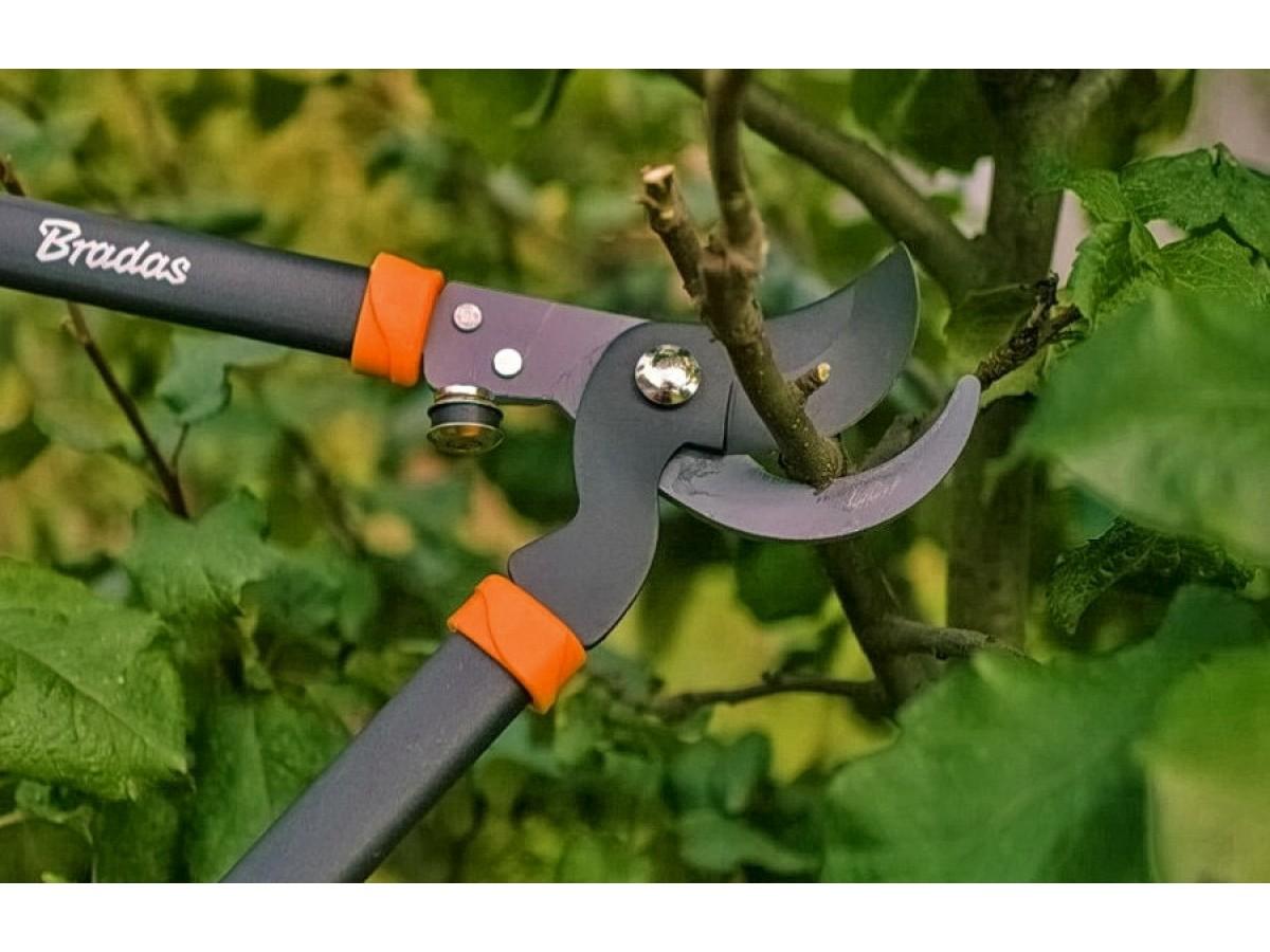 ТОП-5 вещей для сада и огорода: секаторы, сучкорезы, ножницы садовые