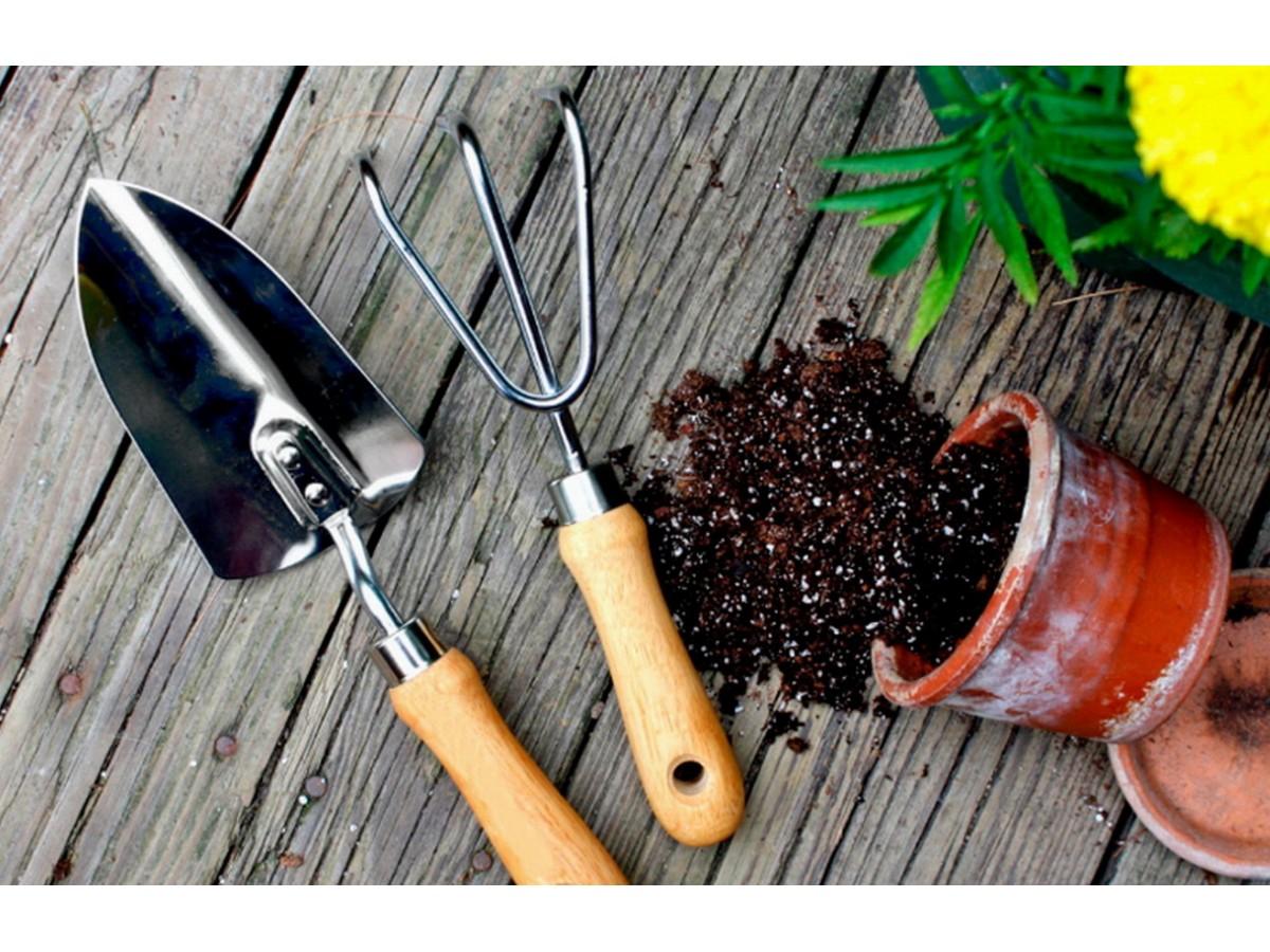 ТОП-5 вещей для сада и огорода: малый садовый инвентарь